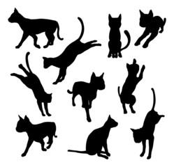 Pet cat silhouettes