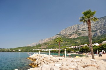 View of Tucepi with sea, palm tree, stones and mountain Biokovo