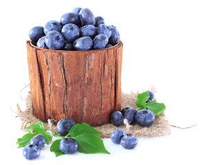 Blueberries in wooden basket isolated on white