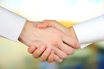 Business handshake on bright background