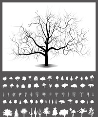 vector isolated trees silhouettes