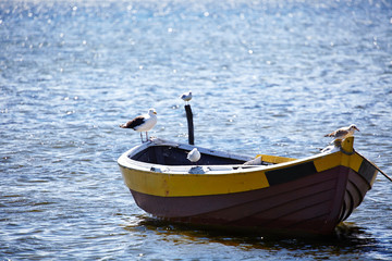 Lone fishing boat floating on the sea