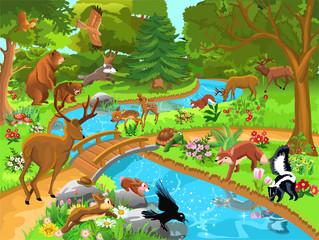 Keuken foto achterwand Magische wereld wild animals living in the forest