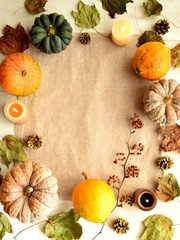 Colorful pumpkins with fall leaves.frame