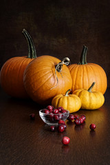 Pumpkins, gourds and cranberries on table
