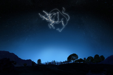 Zodiac Sign Taurus with a star and symbol outline