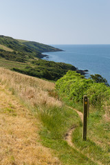 Wall Mural - South West Coastal Path from Polkerris Cornwall heading south