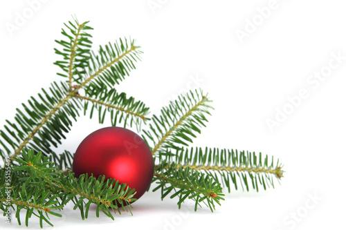 tannenzweig weihnachten stockfotos und lizenzfreie bilder auf bild 55155467. Black Bedroom Furniture Sets. Home Design Ideas
