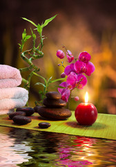 Fototapete - massage - bamboo - orchid, towels, candles , stones-vertical
