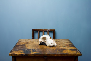 Chair and desk with a goat skull
