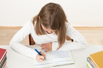 Schülerin schreibt ihre Hausaufgaben
