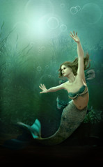 Photo sur Aluminium Mermaid The little Mermaid