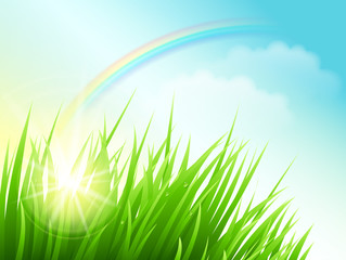 Green field with sun and rainbow. Vector Background