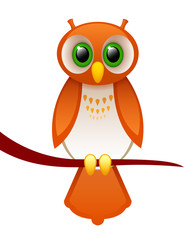 owl cartoon character on a white background