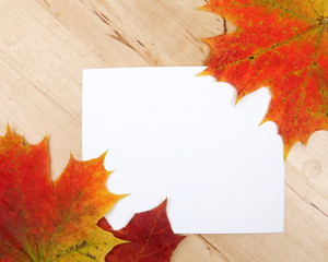 Autumn leaves with paper sheet on wooden background texture
