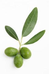 Fototapete - Ramo di ulivo con foglie e olive#2