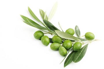 Fototapete - Ramo di ulivo con foglie e olive#3