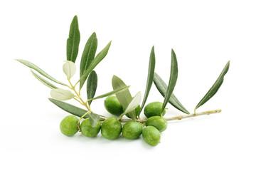 Fototapete - Ramo di ulivo con foglie e olive#4