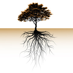 A tree with a visible root. Space for a text
