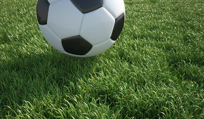 Soccer ball close up on grass lawn.