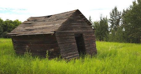 Old leaning farm shed in grassy field.