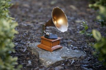 Grammophone