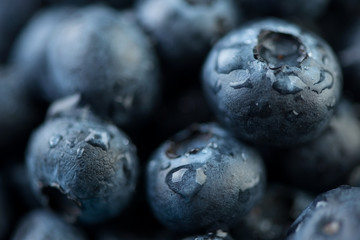 Macro shot of blueberries covered with water drops