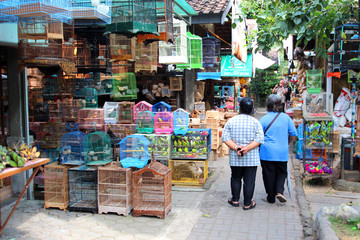 Foto auf Leinwand Indonesien Indonésie - Marché aux oiseaux (Yogyakarta)