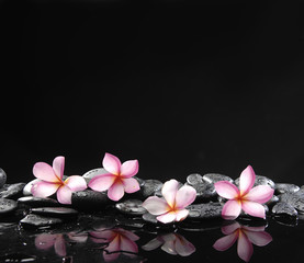 Poster de jardin Spa Stone spa and healthcare concept-frangipani and black pebbles