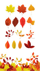 Autumn Leaf Icons