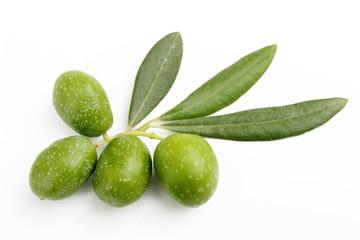 Fototapete - Olive verdi e foglie