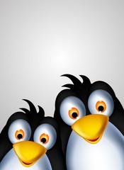 cute couple penguin cartoon