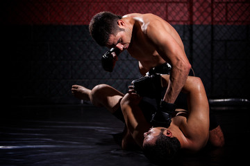 Punching and opponent in the ground