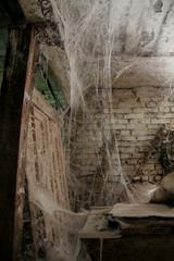 Obraz Wielka pajęczyna - fototapety do salonu