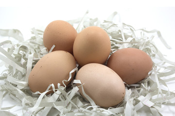 Brown eggs on the paper .
