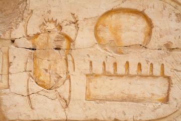 Scarab beetle. Egypt
