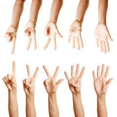 Viele Hände zählen von eins bis fünf