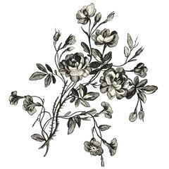 Bouquet de fleurs XVIIIèmé siècle