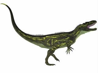 Torvosaurus on White