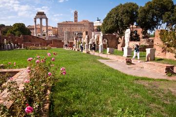 Fototapete - Atrium vestae at Roman forum