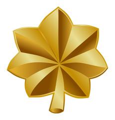 Fototapete - American Major insignia rank badge