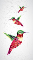 Foto auf AluDibond Geometrische Tiere Humming bird geometric illustration.