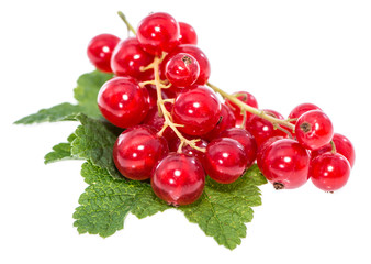 Isolated red Berries