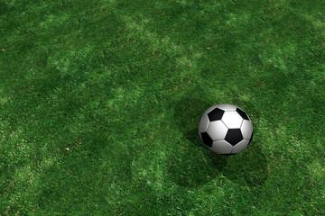 Fussball auf grünem Rasen