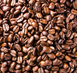 Coffee beans  background or texture high resolution, closeup