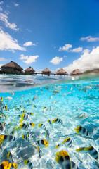 Fototapete - Tropical paradise