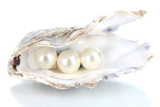 Open oyster with pearls isolated on white