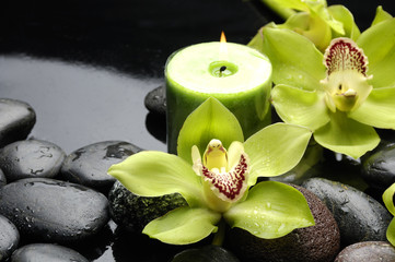 Aluminium Prints Spa Green orchid and candle on black stones