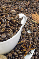 Coffee beans in white cup