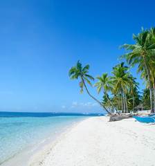 Foto auf AluDibond Strand tropical beach